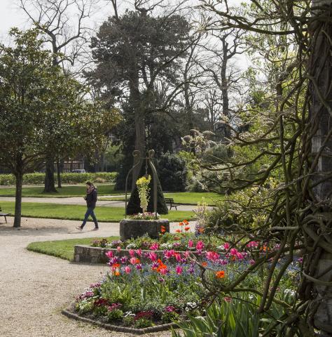 vue du jardin des plantes avec une allée