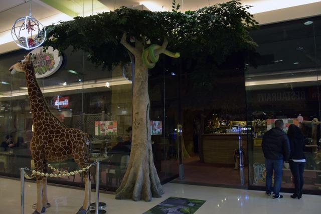 Facade extérieure de Rev'Art Jungle