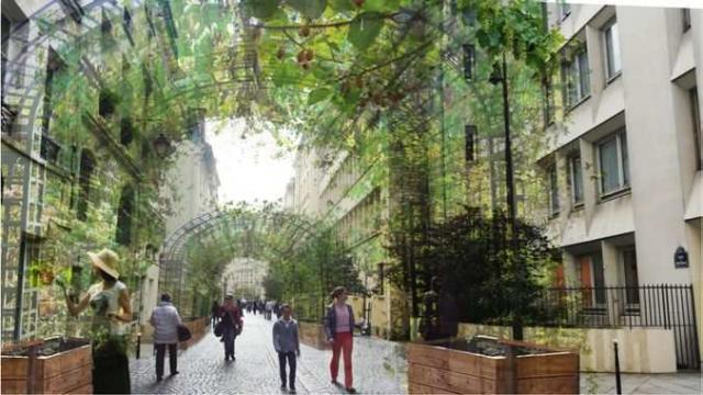 Image d'un projet de canopée urbaine en forme de tonnelle où la végétation épouse des arceaux enjambant la rue et ses passants