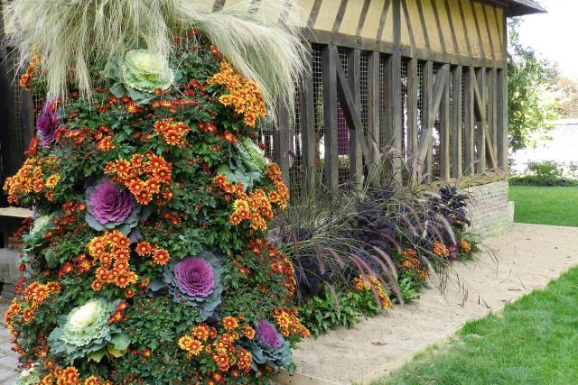 Exposition couleurs d 39 automne au jardin des plantes for Au jardin des plantes poem