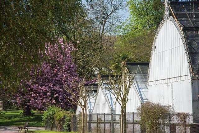 Appel aux dons pour les serres du jardin des plantes - Adresse jardin des plantes rouen ...