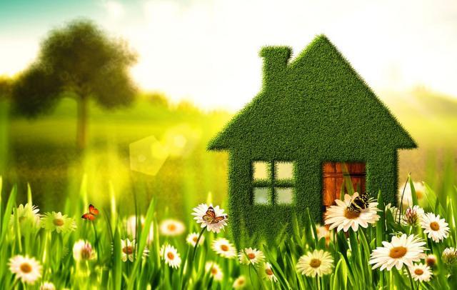 Maison en herbe dans un champ
